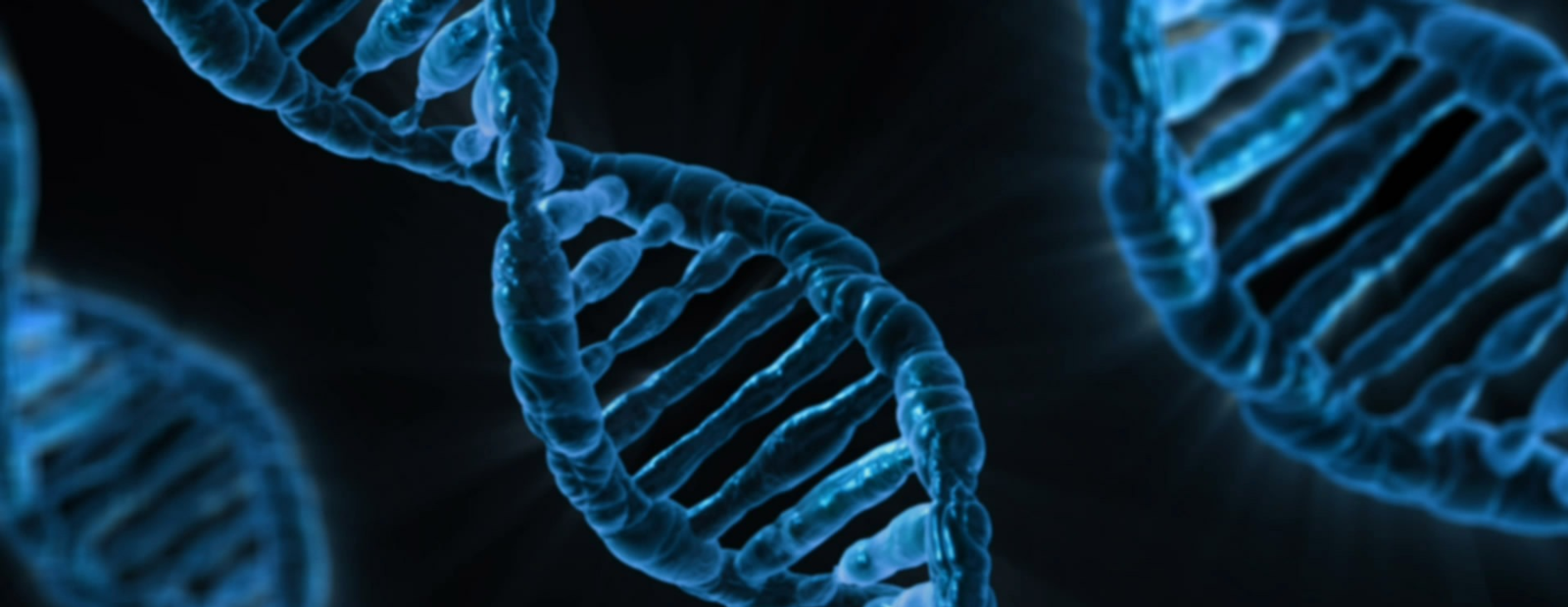 Reproductive gene editing imperils universal human rights | OpenGlobalRights